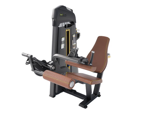 EVOST I Seated Leg Curl